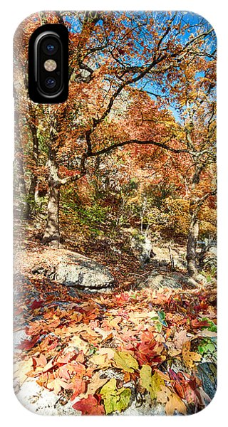 A Walk Through The Maple Trail IPhone Case
