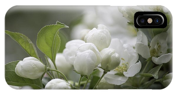A Whisper Of Spring IPhone Case