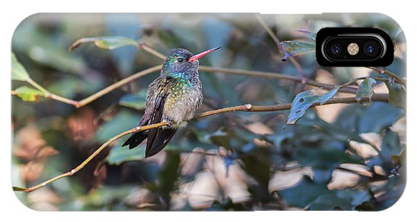 iPhone Case - A White-chinned Sapphire, Hylocharis by Alex Saberi