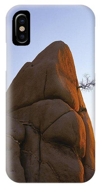 A Wild Hair IPhone Case