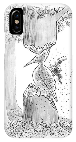 A Woodpecker Is Using His Beak To Carve Is Own IPhone Case