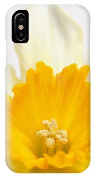 Abstract Daffodil IPhone Case
