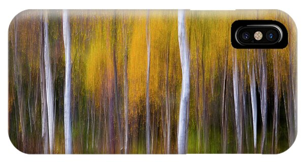 Birch Tree iPhone Case - Abstract Fall by Andreas Christensen