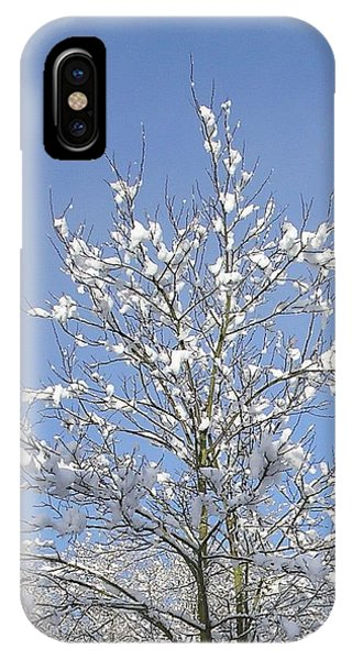 Ash Tree In Winter IPhone Case