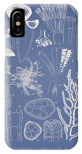 Alga iPhone X Case - Acetabularia Caraibica And Chondria Intricata by Aged Pixel