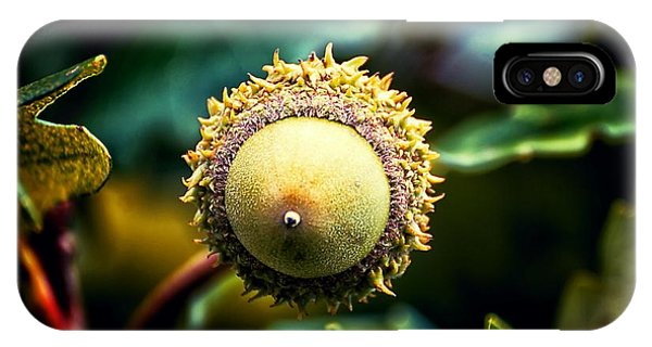 Acorn Abstract IPhone Case