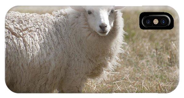 Adorable Sheep IPhone Case