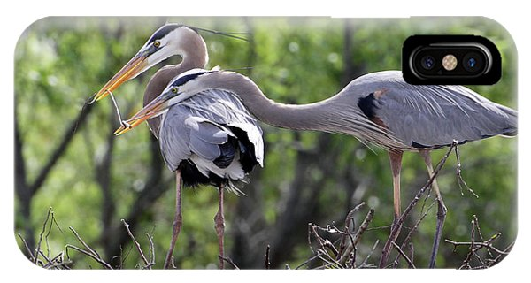 Affectionate Great Blue Heron Mates IPhone Case
