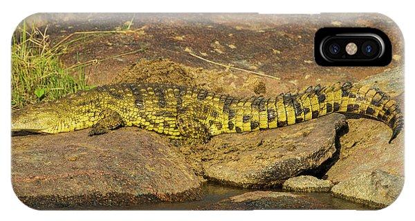 Crocodile iPhone Case - Africa Tanzania Nile Crocodile Basks by Ralph H. Bendjebar