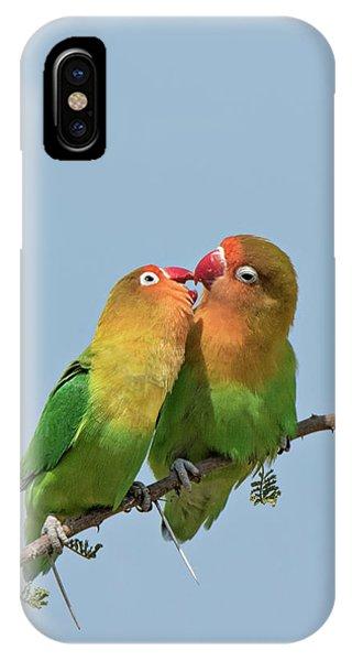 Lovebird iPhone Case - Africa, Tanzania, Serengeti by Charles Sleicher
