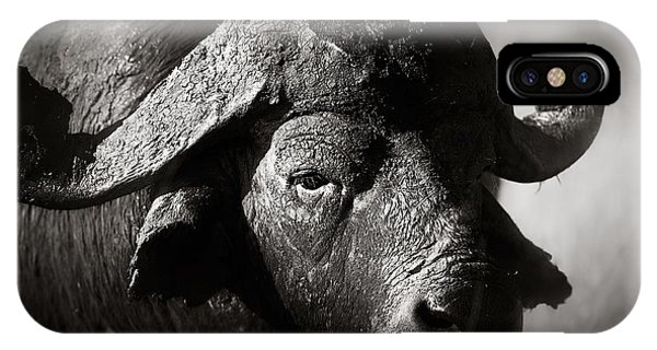 Monotone iPhone Case - African Buffalo Bull Close-up by Johan Swanepoel
