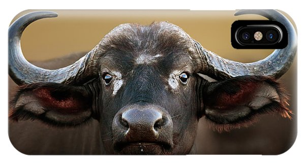 Head And Shoulders iPhone Case - African Buffalo Cow Portrait by Johan Swanepoel