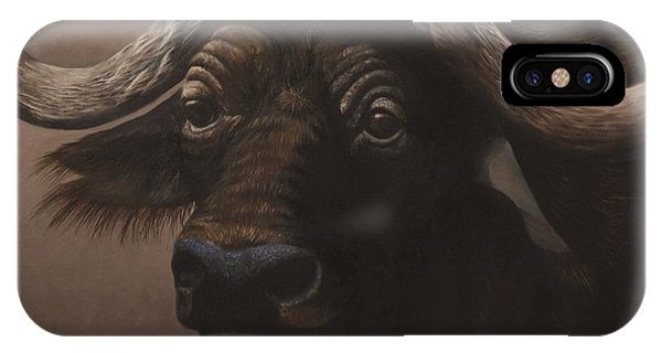 African Buffalo IPhone Case