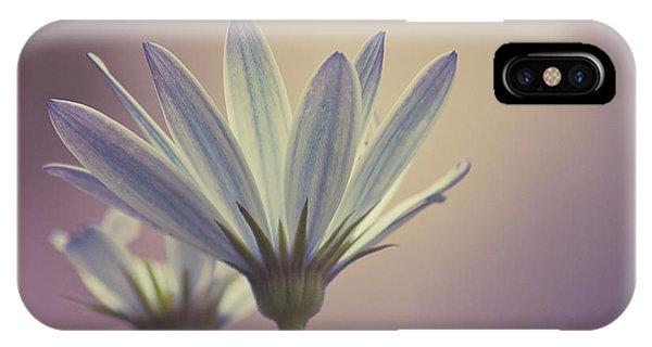 African Daisy II Phone Case by Rani Meenagh