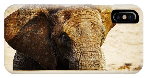 African Elephant Behind A Hill IPhone Case