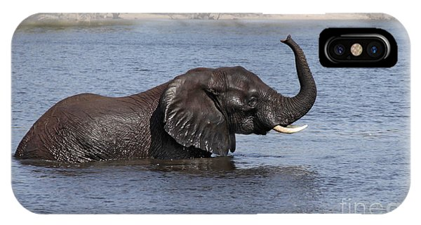 African Elephant In Chobe River  IPhone Case