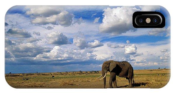 East Africa iPhone Case - African Elephant Walking Masai Mara by Yva Momatiuk John Eastcott