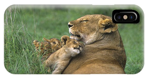 African Lions Mother And Cubs Tanzania IPhone Case