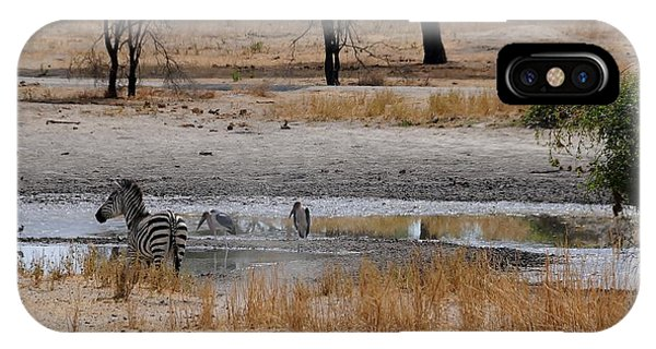 African Series Zebras And Pelican Phone Case by Katherine Green