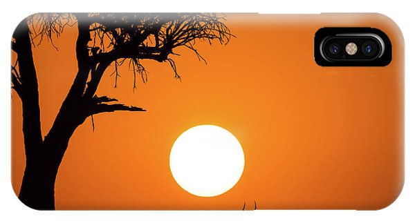 Orange Sunset iPhone Case - African Sunset by Jonathan Zhang