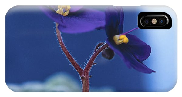 African Violet IPhone Case