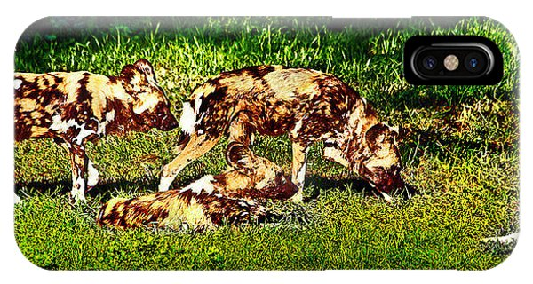 African Wild Dog Family IPhone Case