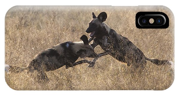 African Wild Dogs Play-fighting IPhone Case
