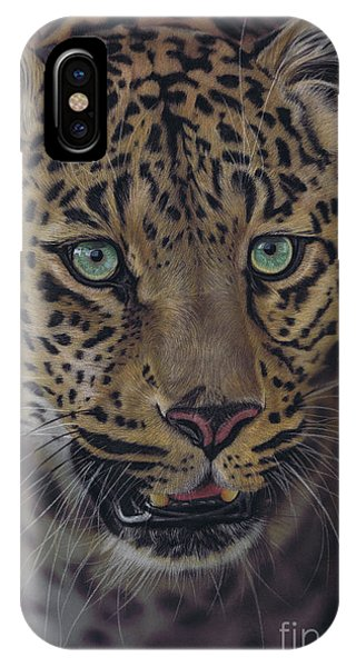 After Dark All Cats Are Leopards IPhone Case