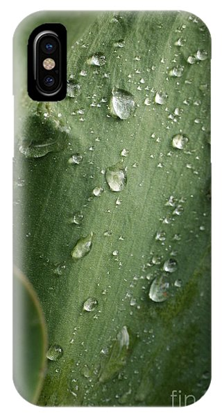 After The Rain 2 IPhone Case