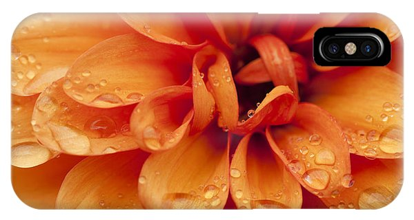 Close Focus Floral iPhone Case - After The Rain by Anne Gilbert