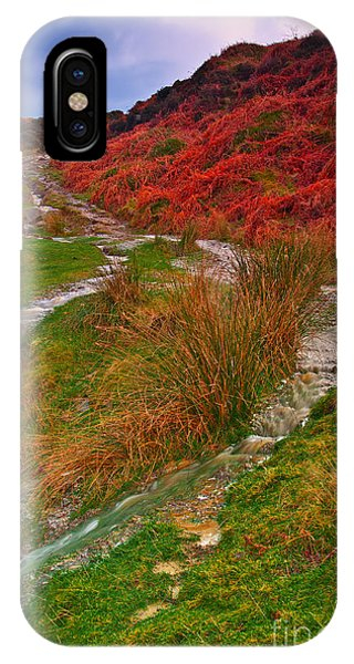 After The Rain - Moorland Streams IPhone Case