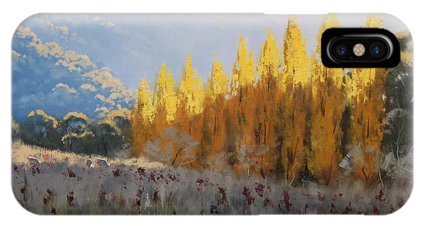 Amber iPhone Case - Afternoon Autumn Light by Graham Gercken