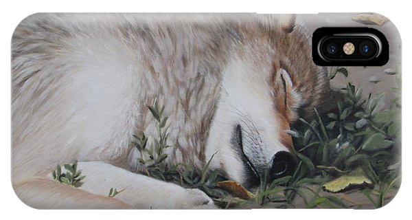 IPhone Case featuring the painting Afternoon Nap by Tammy Taylor