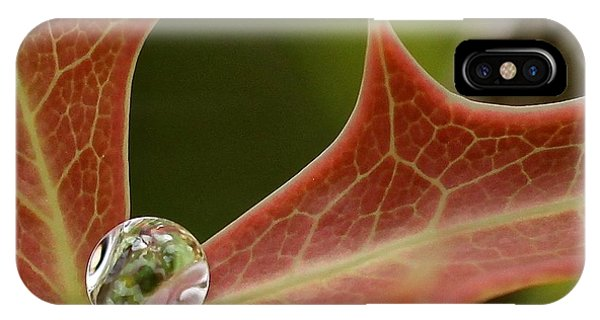 Agarita's Jewel IPhone Case