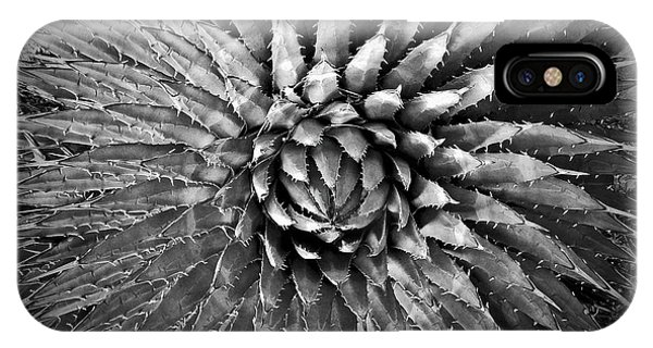 Agave Spikes Black And White IPhone Case