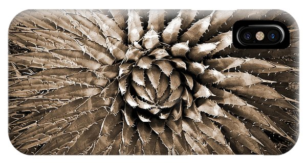 Agave Spikes Sepia IPhone Case