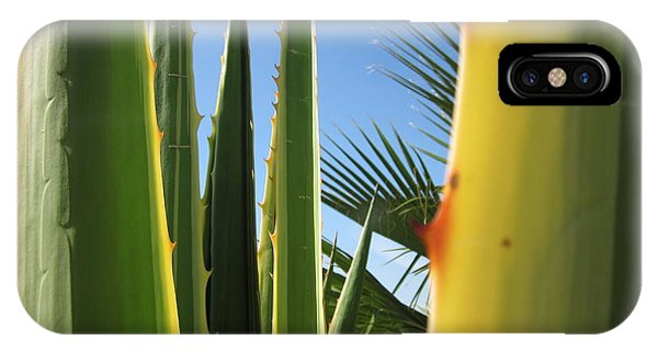 Agaves And Palm Trees IPhone Case