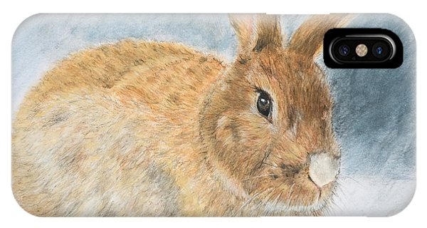 Agouti Pet Rabbit IPhone Case