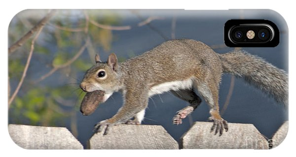 Ahhh Nuts IPhone Case