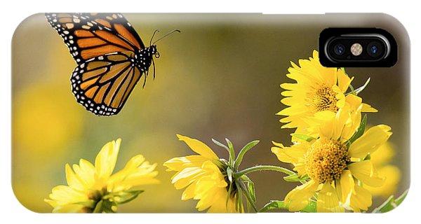 Air Monarch IPhone Case