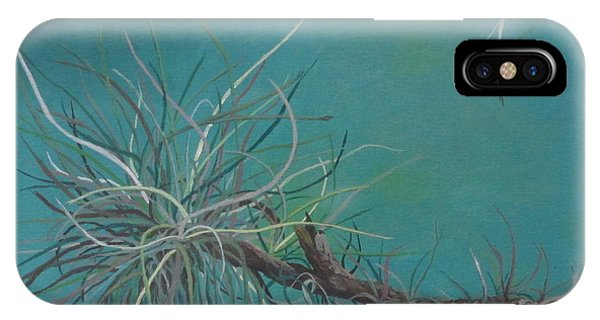 Air Plant Study IPhone Case