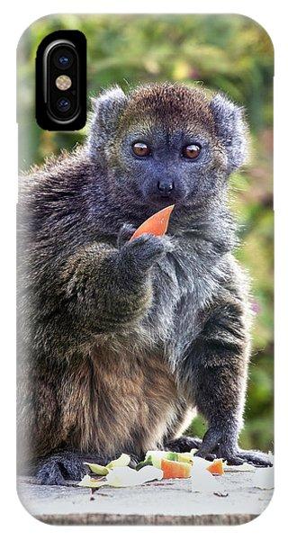 Alaotran Gentle Lemur IPhone Case