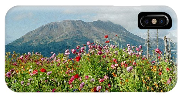 Alaska Flowers In September IPhone Case