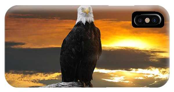 Alaskan Bald Eagle At Sunset IPhone Case