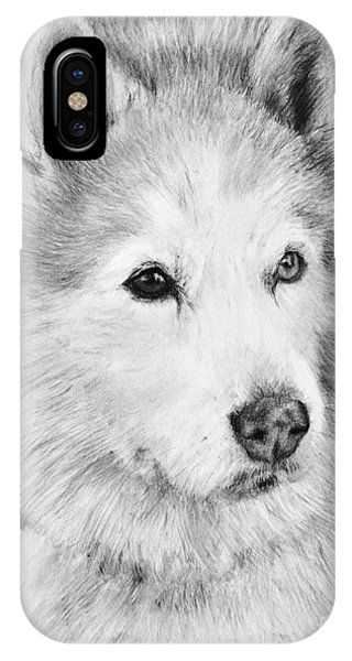 Alaskan Malamute Drawing Mardi IPhone Case