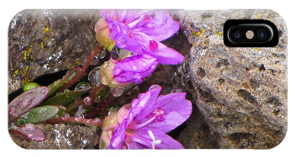 Alaskan Wildflower IPhone Case