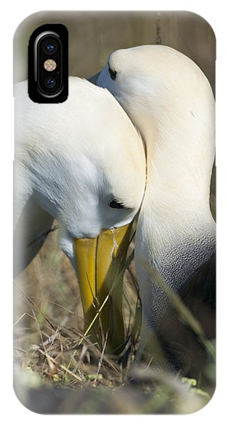 Albatrosses Snuggle Phone Case by Richard Berry