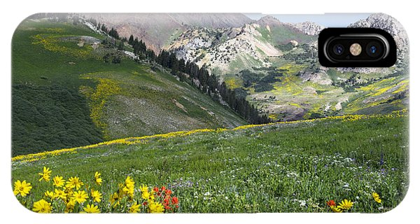 Scarlet Paintbrush iPhone Case - Albion Basin 0500 by Bob Hills