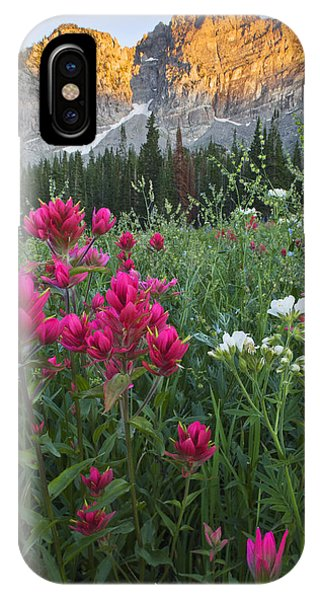 Scarlet Paintbrush iPhone Case - Albion Basin 9344 by Bob Hills