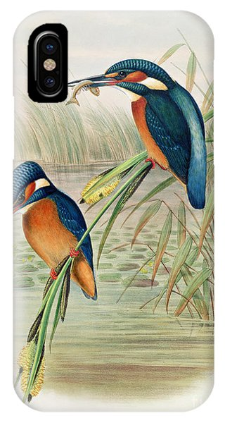 Alcedo Ispida Plate From The Birds Of Great Britain By John Gould IPhone Case
